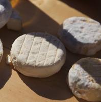 fromages de chèvre caillé doux