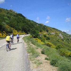 cyclistes dans l'ascenscion du col de la croix de Bauzon - séjour vélo Ardéchoise Autrement